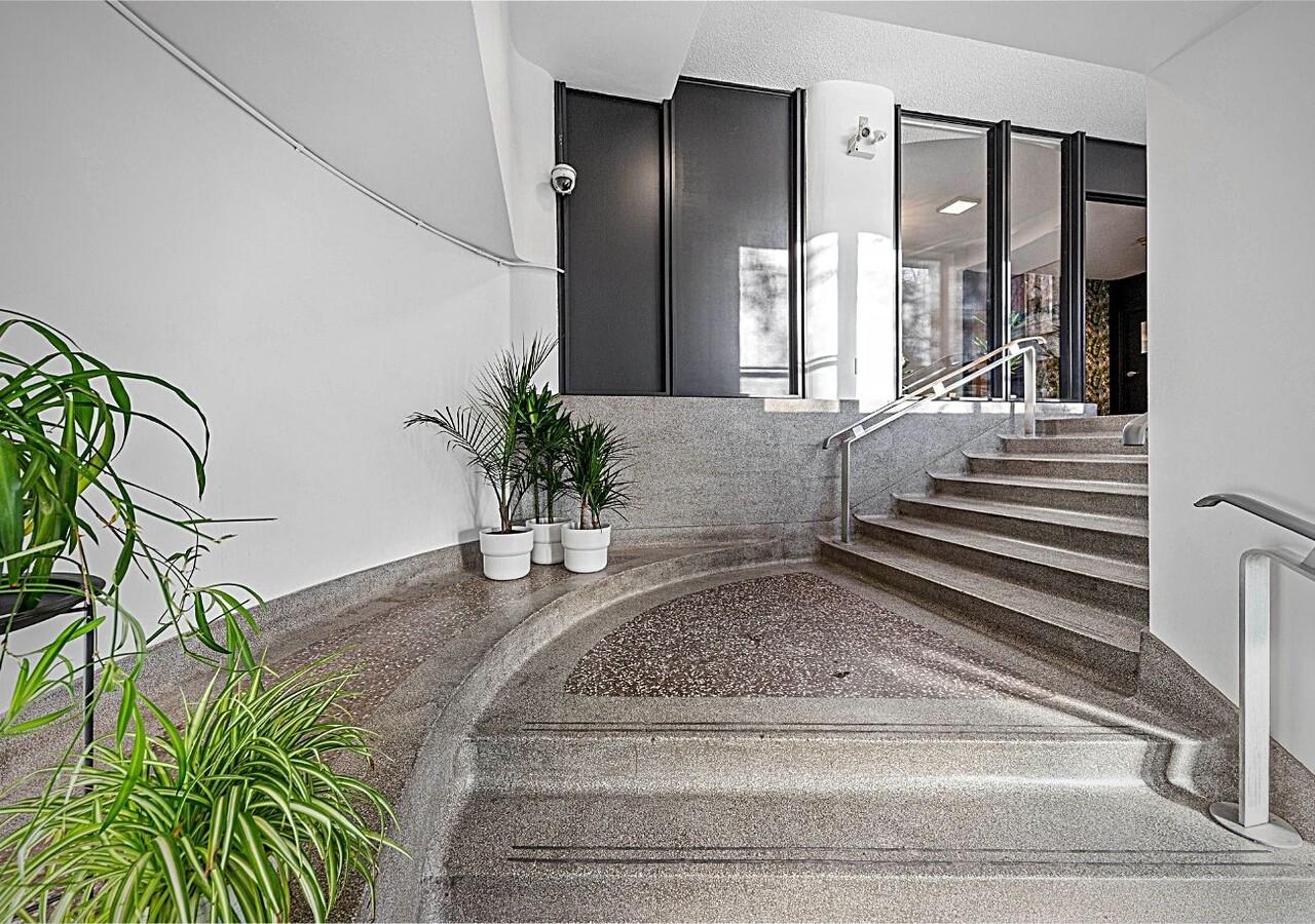Escaliers avec plantes