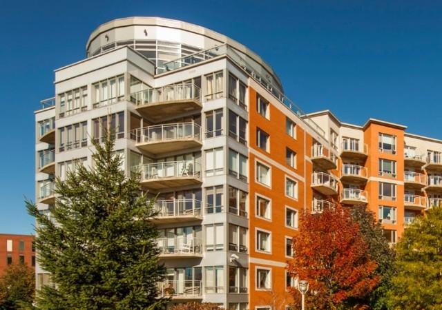Bâtiment avec grandes fenêtres et arbres matures en premier plan