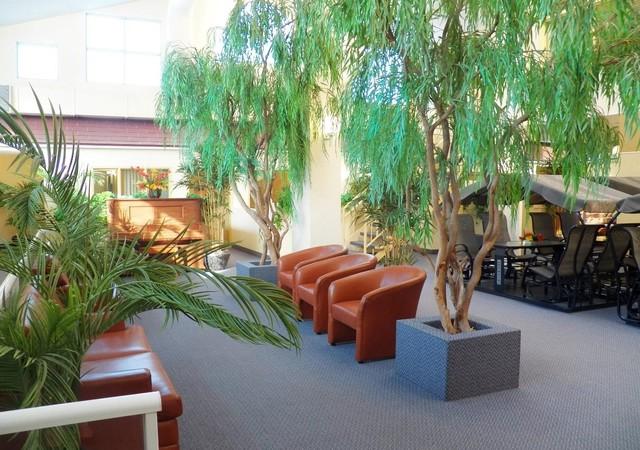 Atrium rempli de verdure