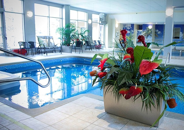 magnifique piscine entourée de fleurs